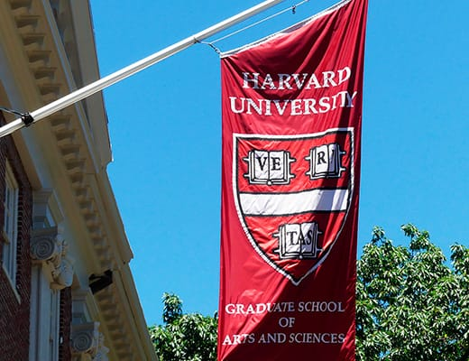 Harvard Universidad