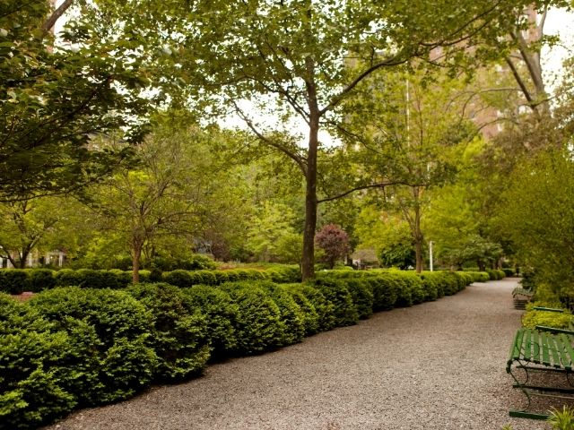 Se observa el interior del parque gramercy park, destacan sus frondosas y verdes plantas.