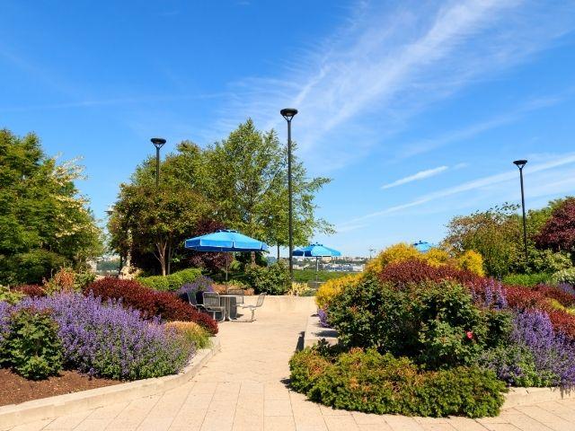Se observa el parque Hudson Riven Park, en primavera con los distintos tonos de las flores.