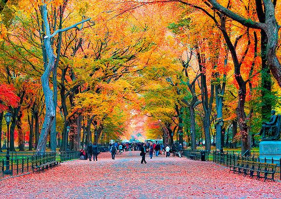 Ejemplo del Tiempo en Nueva York: Otoño en uno de los paseos de Central Park